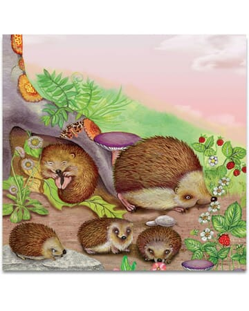 The Hedgehog Family
