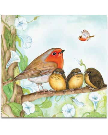 The Robin Family