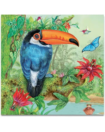 The Toucan In The Jungle